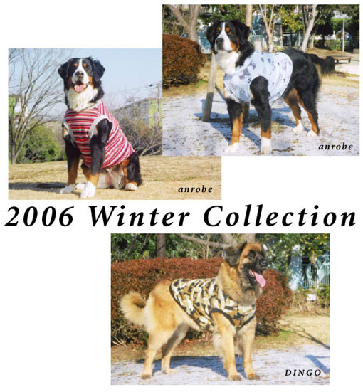 2006 winter collection.jpg