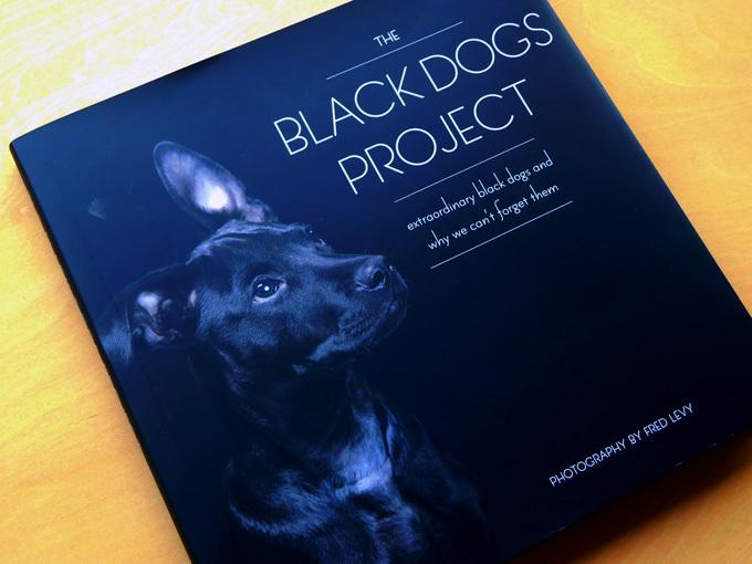 DSCN2440_黒犬写真集.jpg