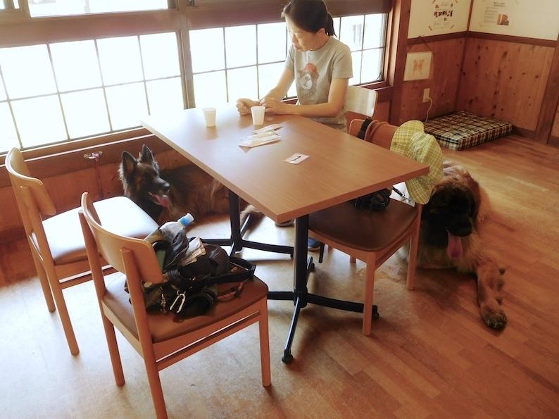 DSCN9150_のぶ玉八カフェいいこ_FB.jpg