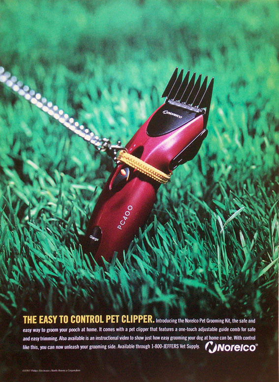 クリッパー広告_PICT0140.jpg