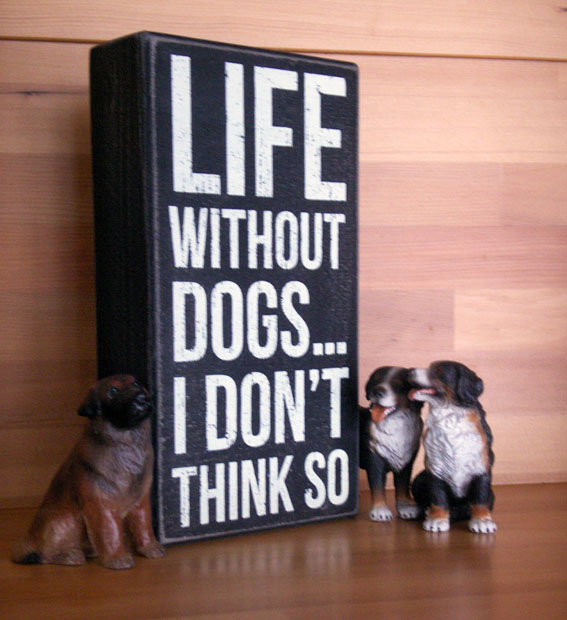 LifeWithoutDogs_PICT0523.jpg