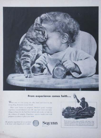 ad/cat&baby.jpg