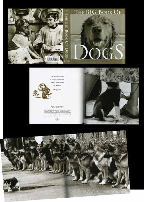 big book of dog.jpg