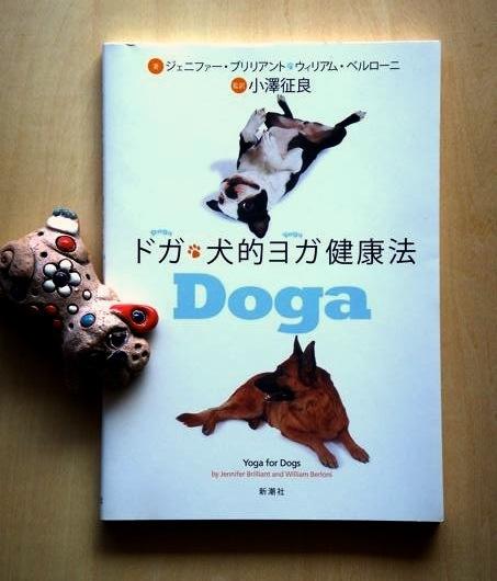 doga_1.jpg