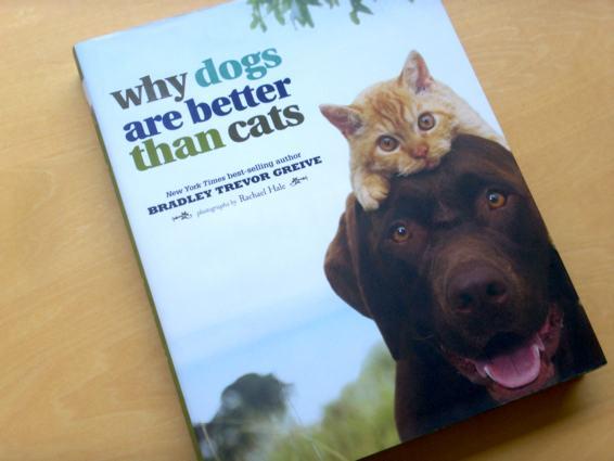 dogscats_1.jpg