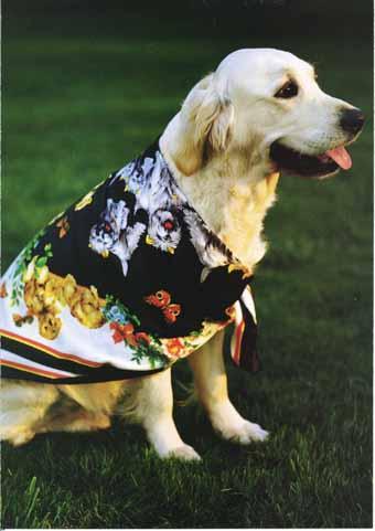scraf dog.jpg
