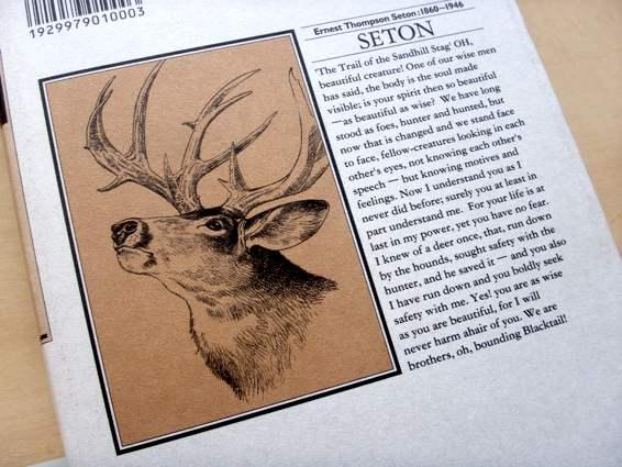 seton3_2.jpg