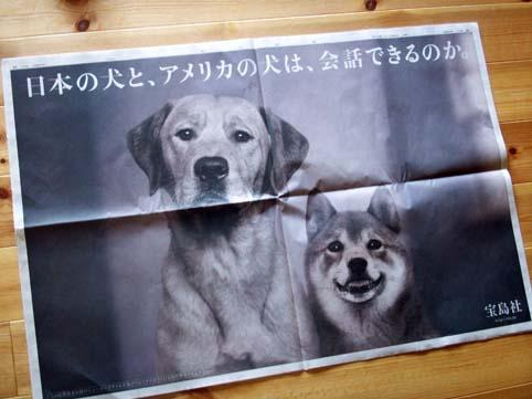 takarajima_ad_0902.jpg