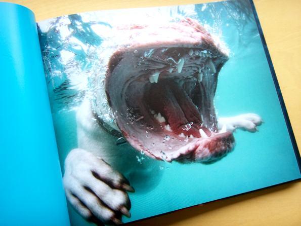 underwater_3.jpg