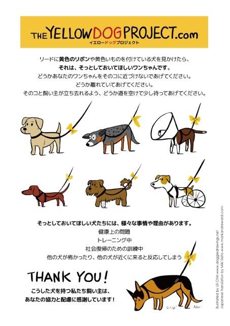 yellowdogproject-jpn-600x849.jpg