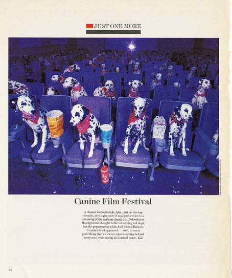 101dogs movie.JPG