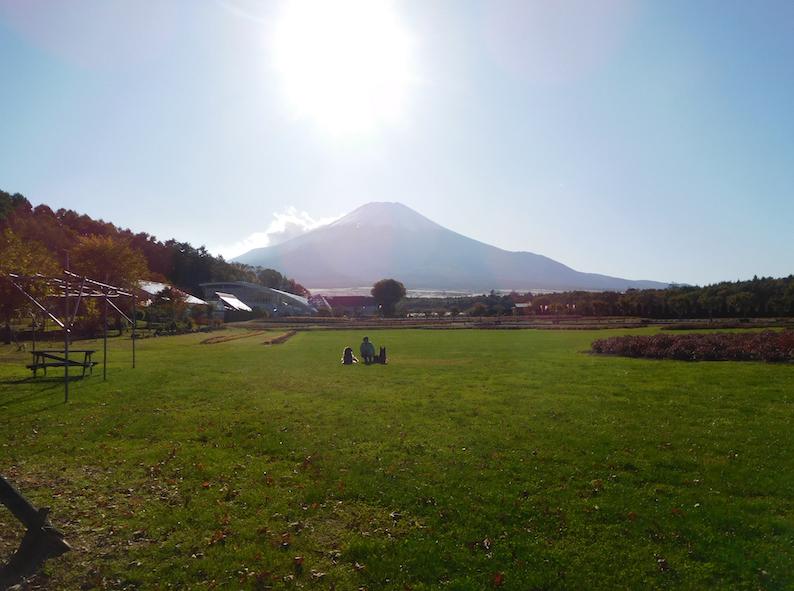 DSCN0072_のぶ玉八花の都公園富士_FB.jpg