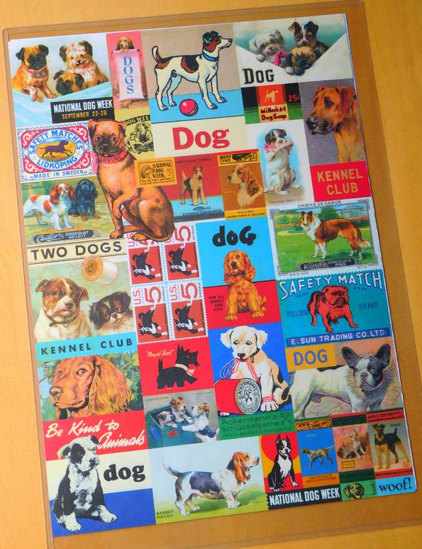 DSCN1188_犬ポスター.jpg