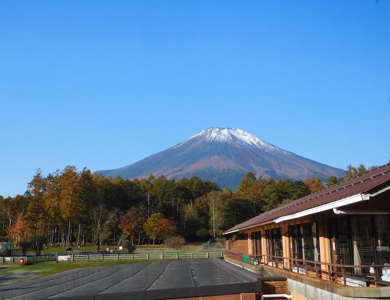DSCN1997_ワフから富士山_FB.jpg