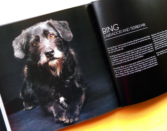 DSCN2443_黒犬写真集.jpg