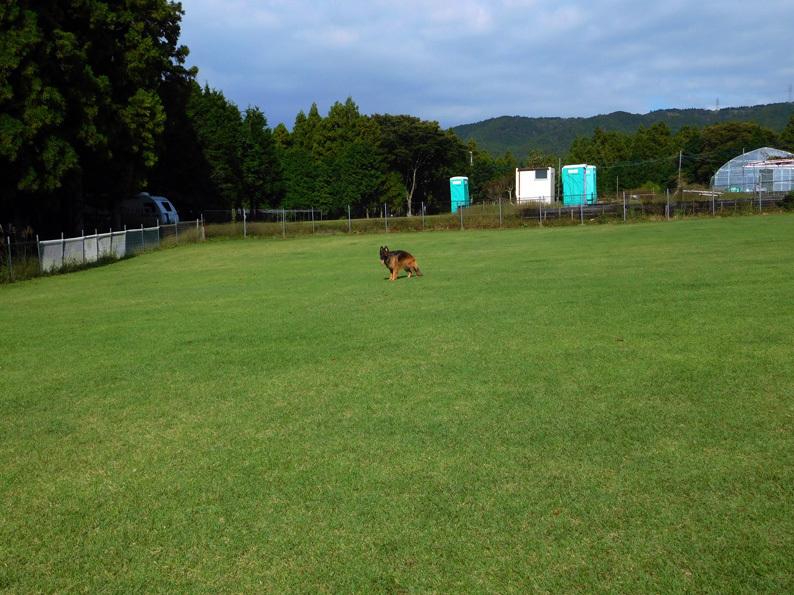 DSCN4601_玉足柄_FB.jpg