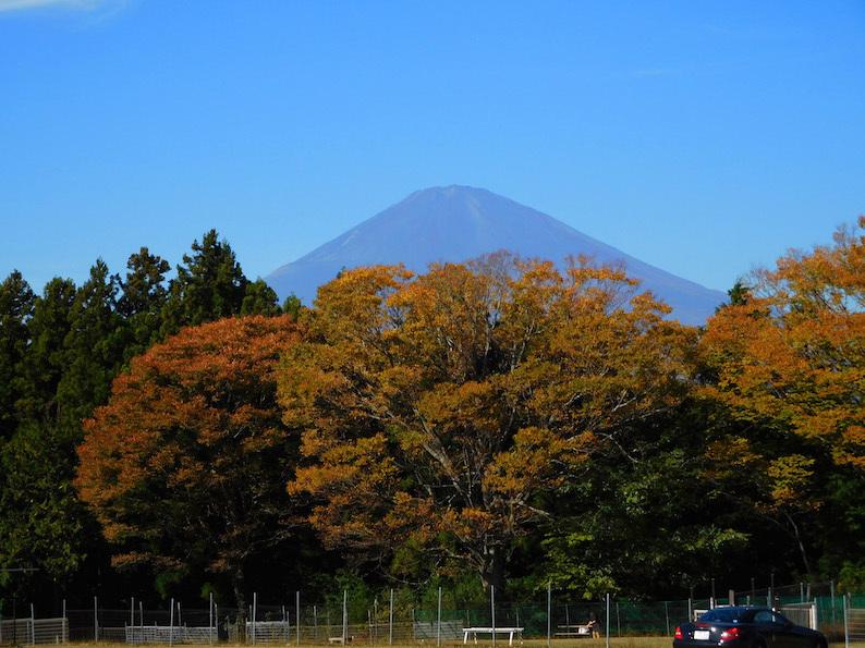 DSCN4809_フジヤマ_FB.jpg