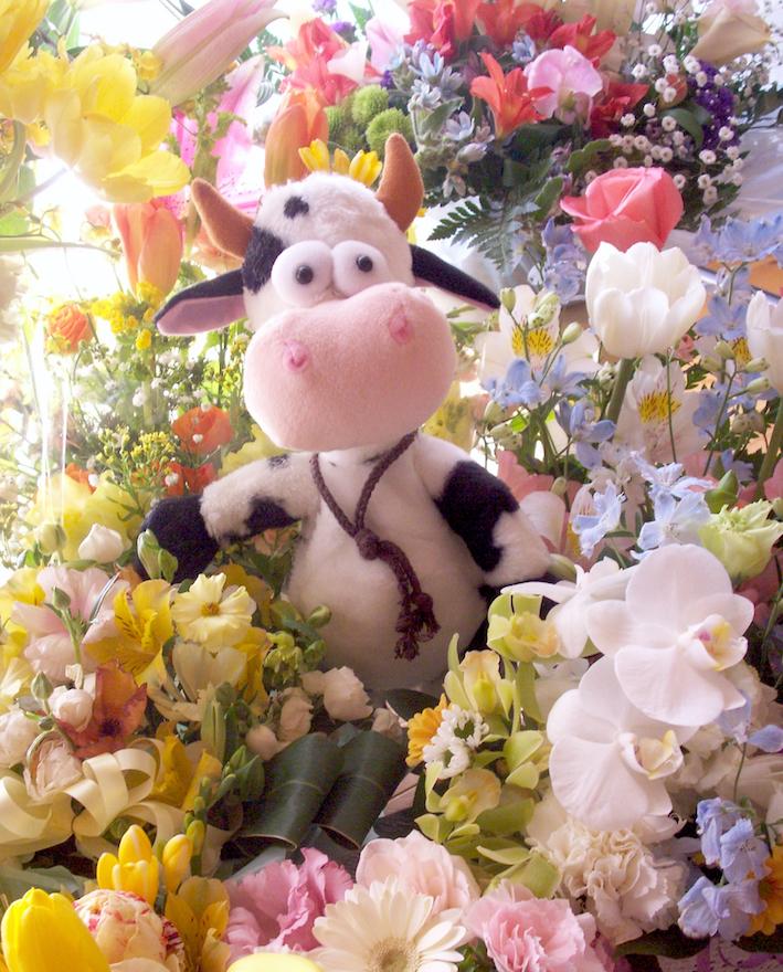 花畑のうしPICT1005_FB.jpg