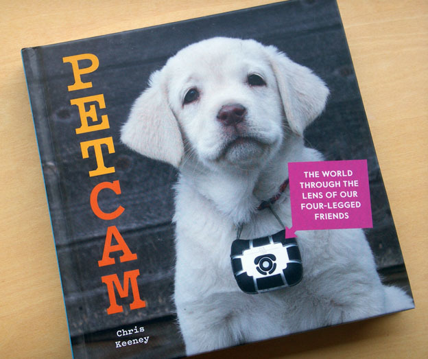 PETCAM_PICT0216.jpg