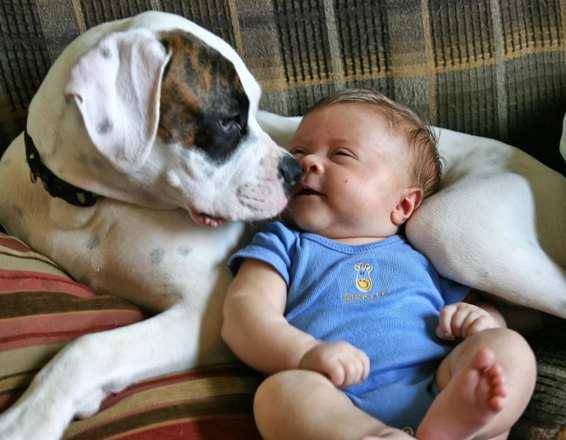 baby&dog.jpg