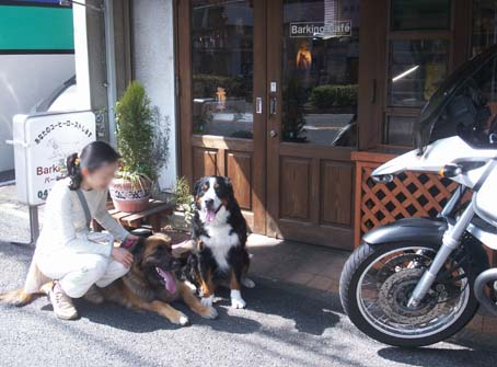 barkingcafe1.jpg