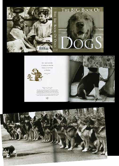 big book of dog.jpg