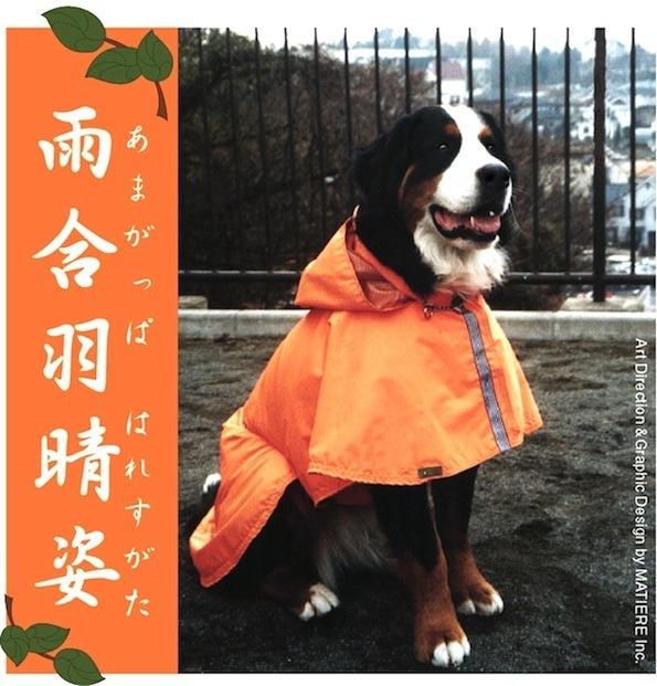 bruna wearing raincoat_blog.jpg