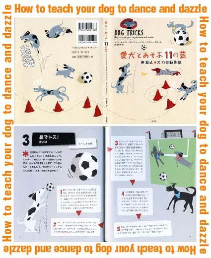 dog tricks.JPG