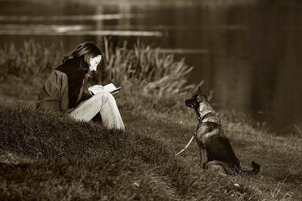 dog_reading.jpg