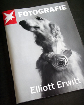 elliott-1.jpg