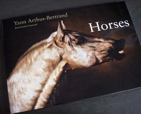 horses_1.jpg