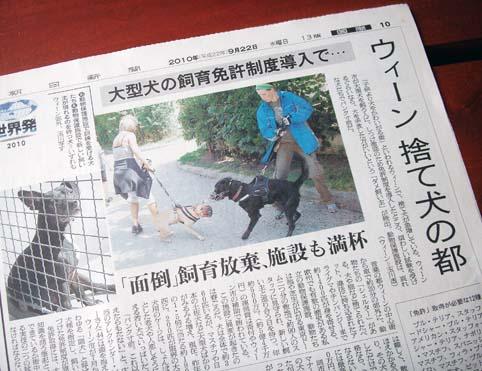 kainushi_menkyo_PICT4783.jpg