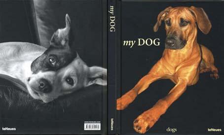 my dog1.jpg