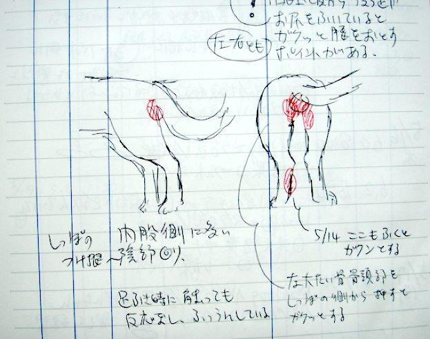 note_1.jpg