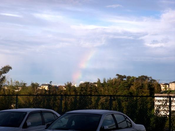 rainbow_10022.jpg