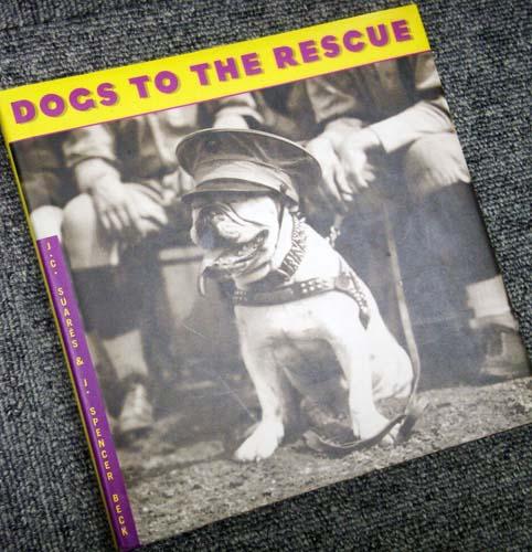 rescue_1.jpg