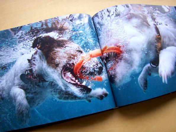 underwater_5.jpg