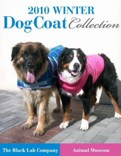 wintercoat_1.jpg