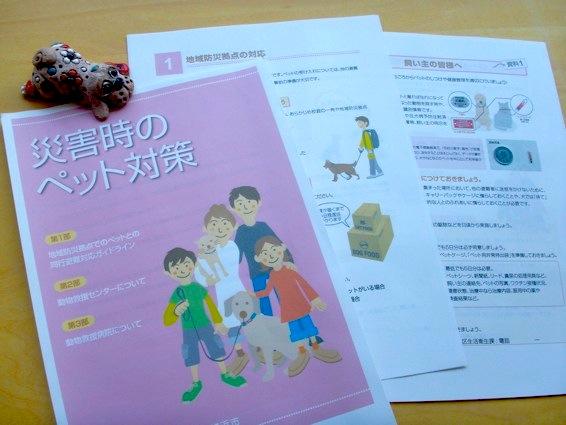 yokohama_pet_PICT0143.jpg